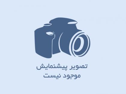کابل نسوز با روکش تفلون با بافت استیل و شیلد قلع اندود
